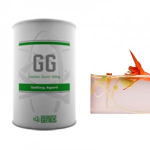 molecular_gastronomy_catering_pack_gellan-gum-500grams